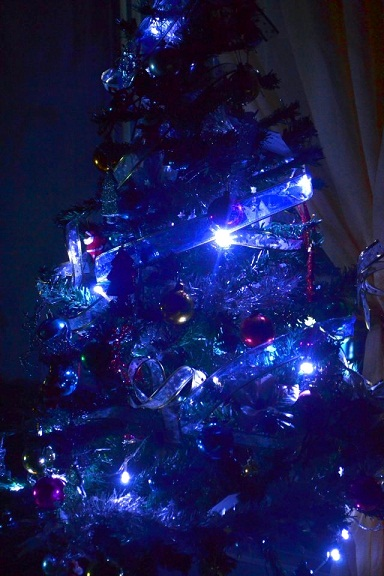 blue, christmas, tree