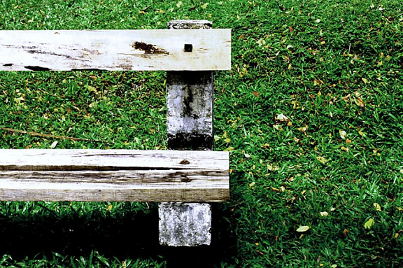 grief, loss, emptiness, mourning, bereavement, bench, park, gone