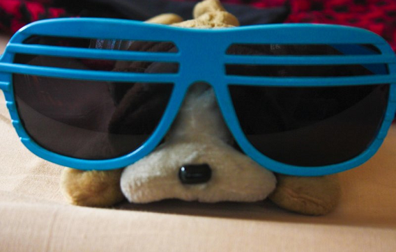 puppy dog eyes, teddy, puppy in shades, stuffed toy, cutie, grin, love, stuffed puppy, stuffed animal