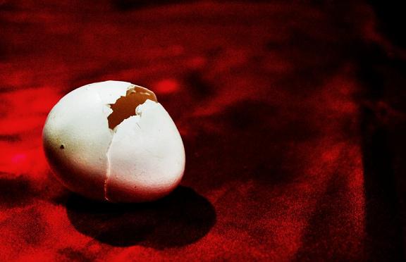 egg shell, crack,